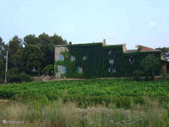 Vakantiehuis Frankrijk, Provence, Carpentras Gîte / Cottage Le Mas de Marotte