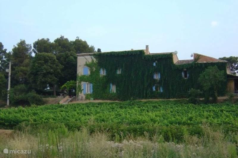 Vakantiehuis Frankrijk, Vaucluse, Carpentras Gîte / Cottage Le Mas de Marotte