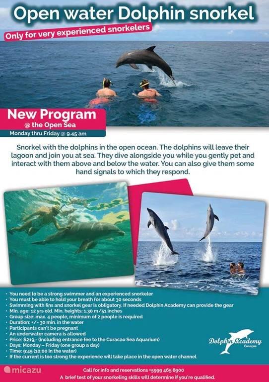 Met dolfijnen zwemmen