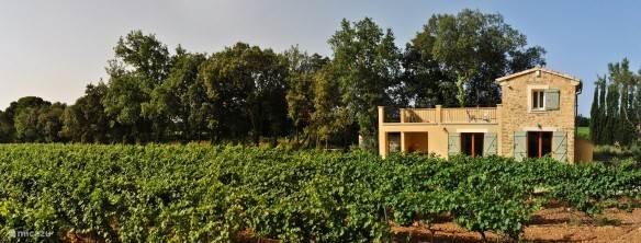Vakantiehuis Frankrijk, Provence, Carpentras Gîte / Cottage Le Mazet de Marotte
