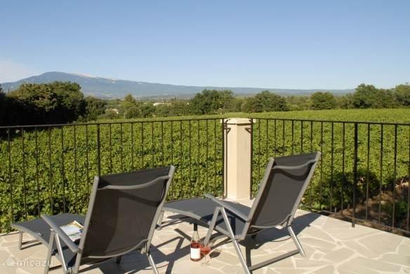 Het uitzicht over de wijngaarden en de Mont Ventoux