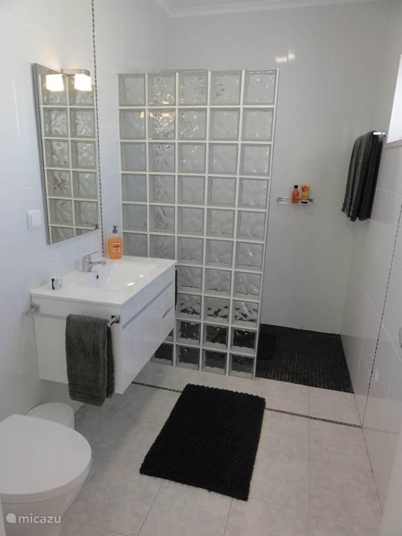 Lichte en ruime badkamer met douche, grote en kleine douchekoppen, glazen stenen divisie, ruime wastafel met spiegel en onder kast, handdoekdroger, hangend toilet.