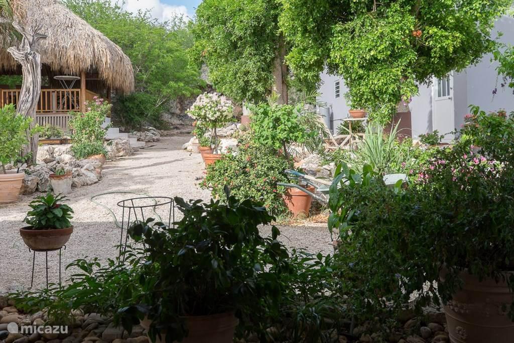 Het overdekte terras in de tropische tuin