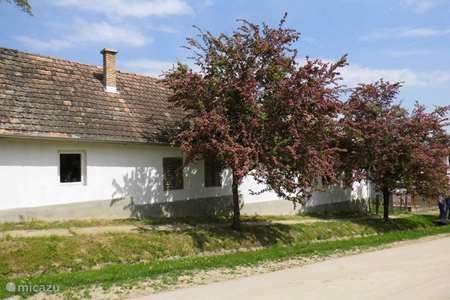 Vakantiehuis Hongarije – vakantiehuis Liszi Haza