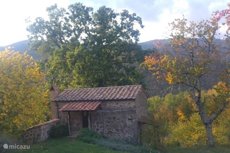 Vakantiehuis Italië, Toscane, Santa Fiora Boerderij Podere di Maggio - Casa Ciliegi