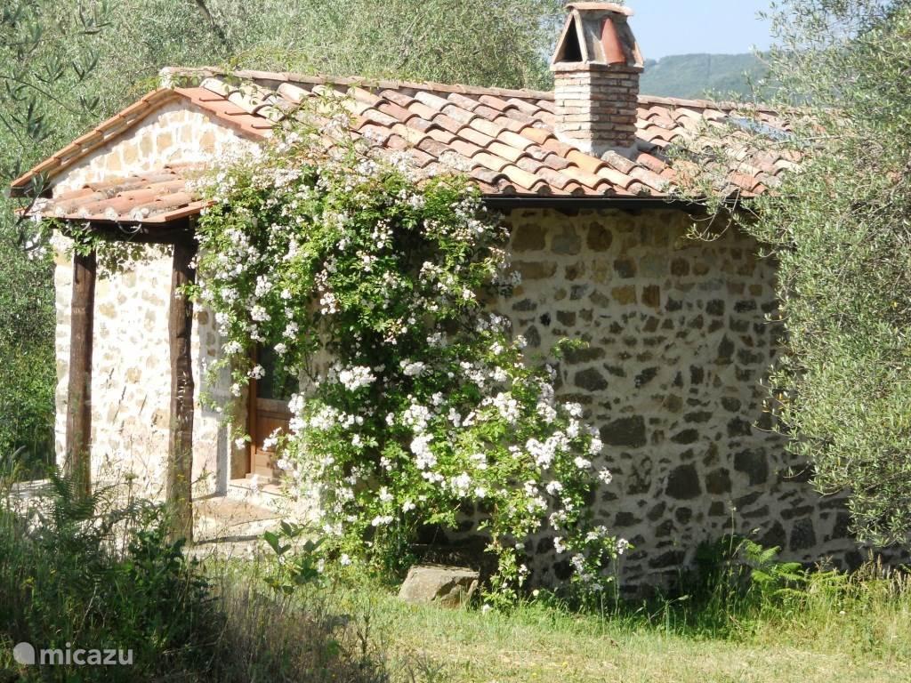 Vakantiehuis Italië, Toscane, Santa Fiora boerderij Podere di Maggio - Casa Olivi