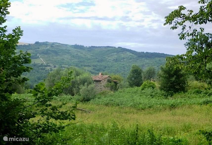 Casa Olivi in het landschap