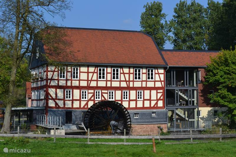 ferienhaus ferienhaus erica in frankenau sauerland deutschland mieten micazu. Black Bedroom Furniture Sets. Home Design Ideas
