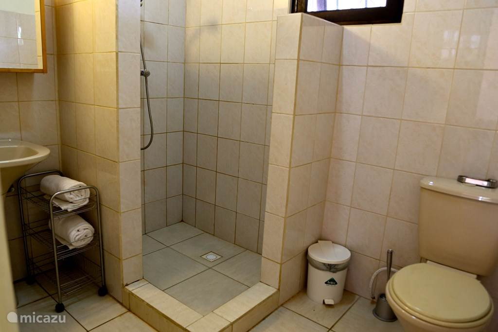 bathroom with toilet. shower and sink