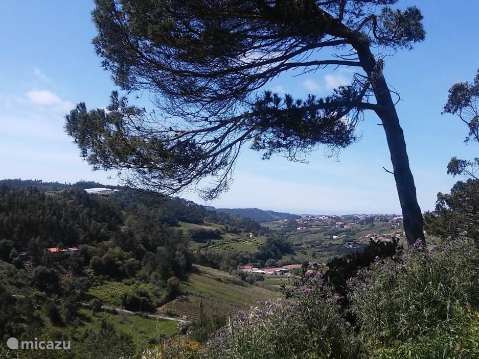 Uitzicht vanuit Casa Matsu.