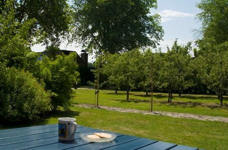 Een comfortabel vakantiehuis in een autovrij park. Veel groen, privacy en rust op het park. Strand en bos in de directe nabijheid.  13-20 juli vrij.