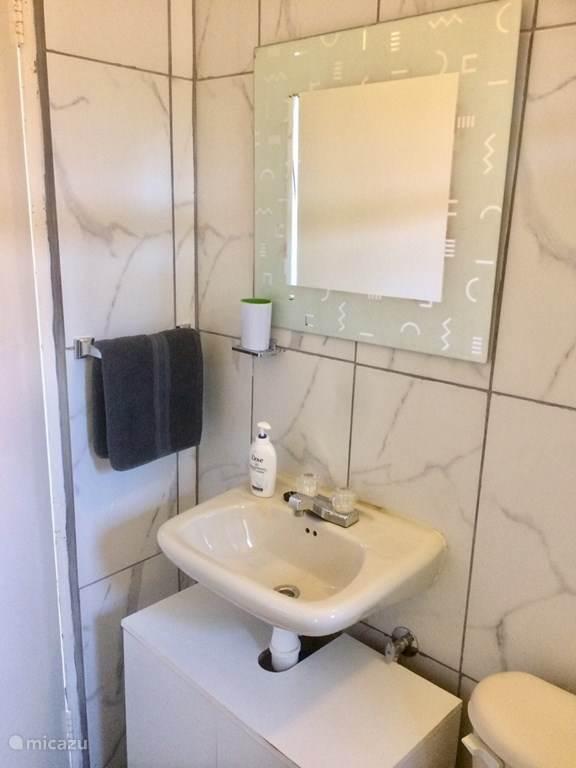Wastafel met badkamerkastje