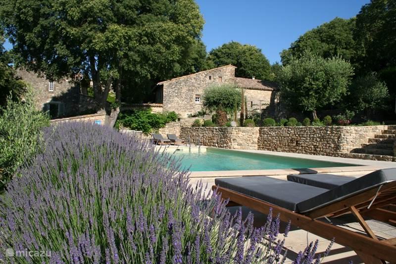 Vacation rental France, Gard, Uzès  Gîte / Cottage Mas d'Oleandre - Grenadier