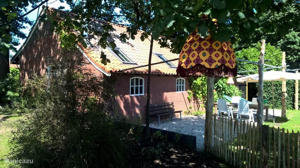Het huis met terras en druivenstruiken.