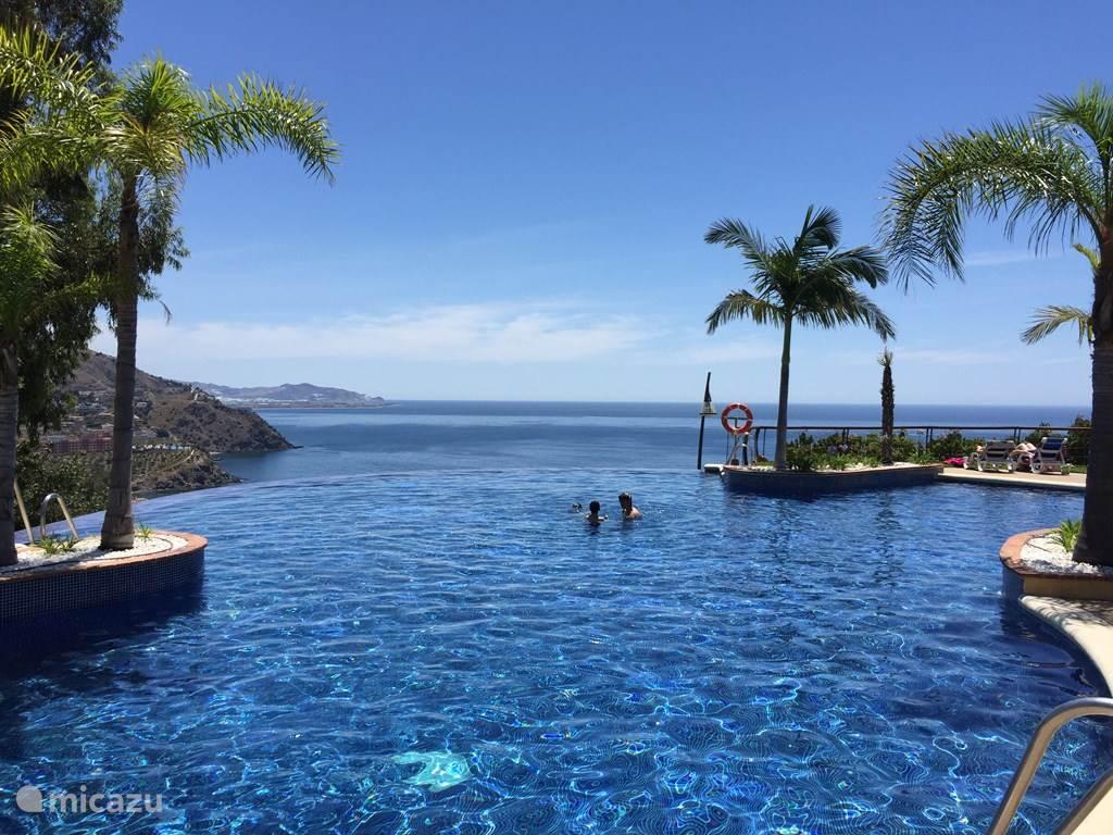 Het grote zwembad, open van half juni tot en met half september