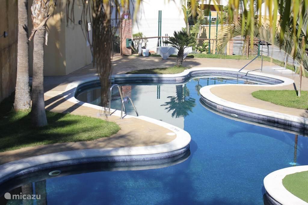 Zwembad naast het huis is 11 maanden per jaar open.