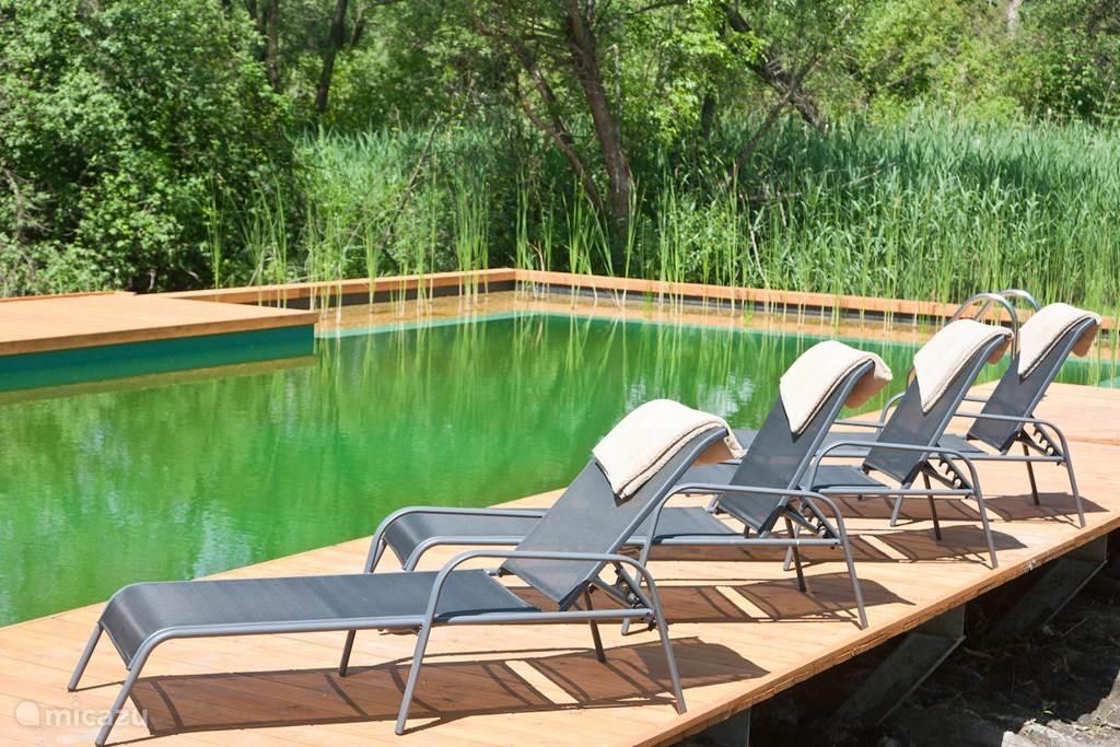 Het biologische zwembad wordt zonder chemicaliën gereinigd: dit werk verrichten de waterplanten! Het bad is 6 x 16 m groot en beschikt over een douche en een zonne-terras met ligstoelen.