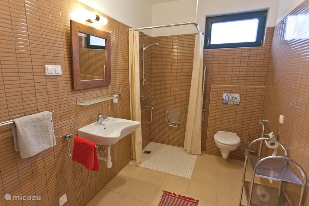Deze badkamer is  rolstoeltoegankelijk en beschikt over steunbeugels, een aangepaste wastafel met verstelbare spiegel en een douche met zitje.