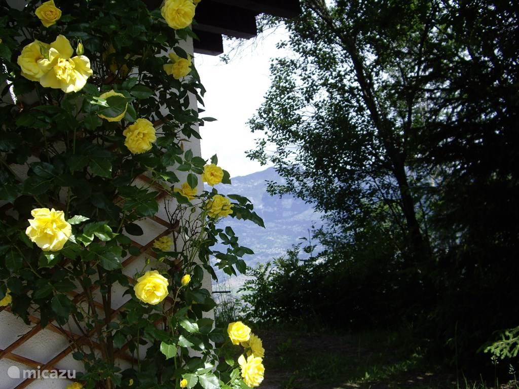 Zijkant met uitzicht op het Rhonedal