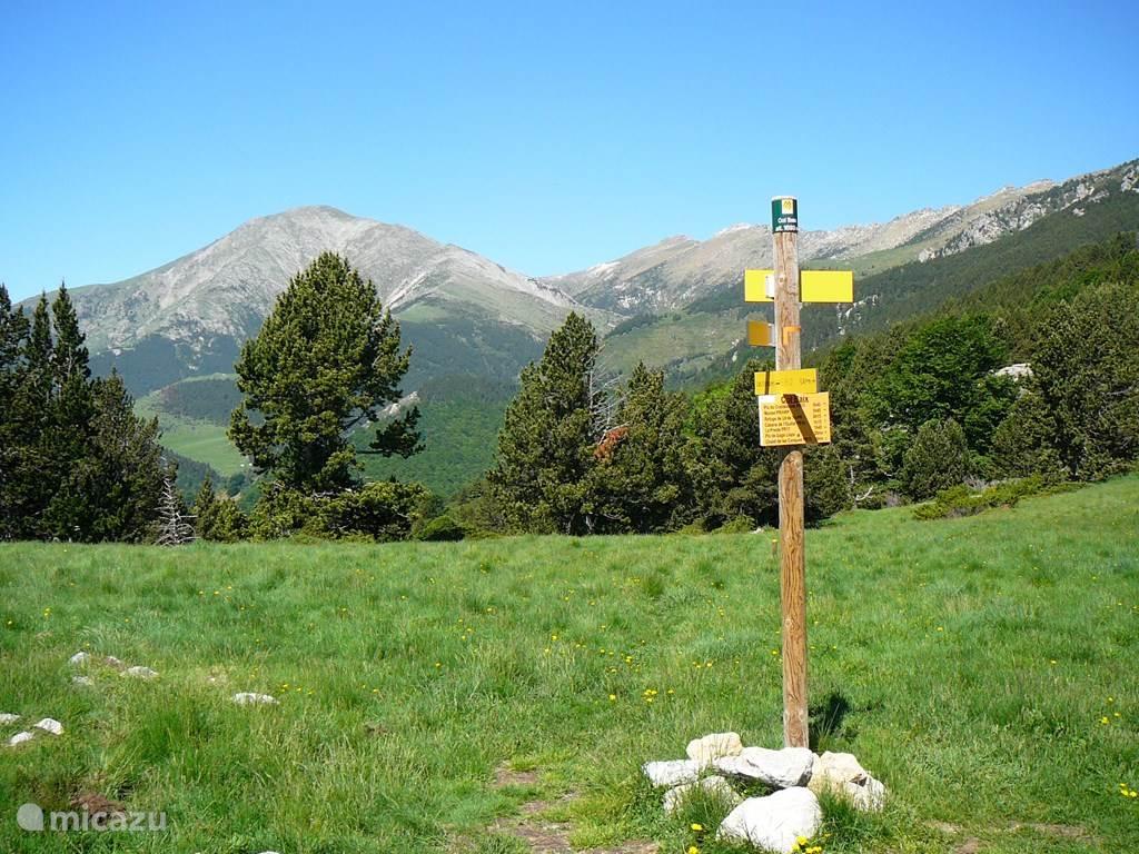 Heerlijk wandelen in de bergen.