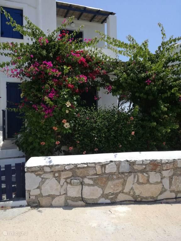Vakantiehuis Griekenland, Paros, Drios appartement Elina residence