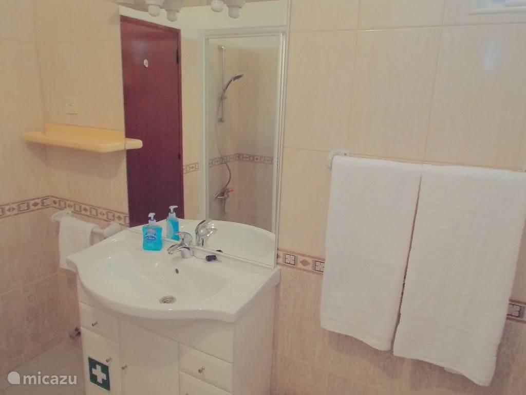 De bijbehorende badkamer met douche.