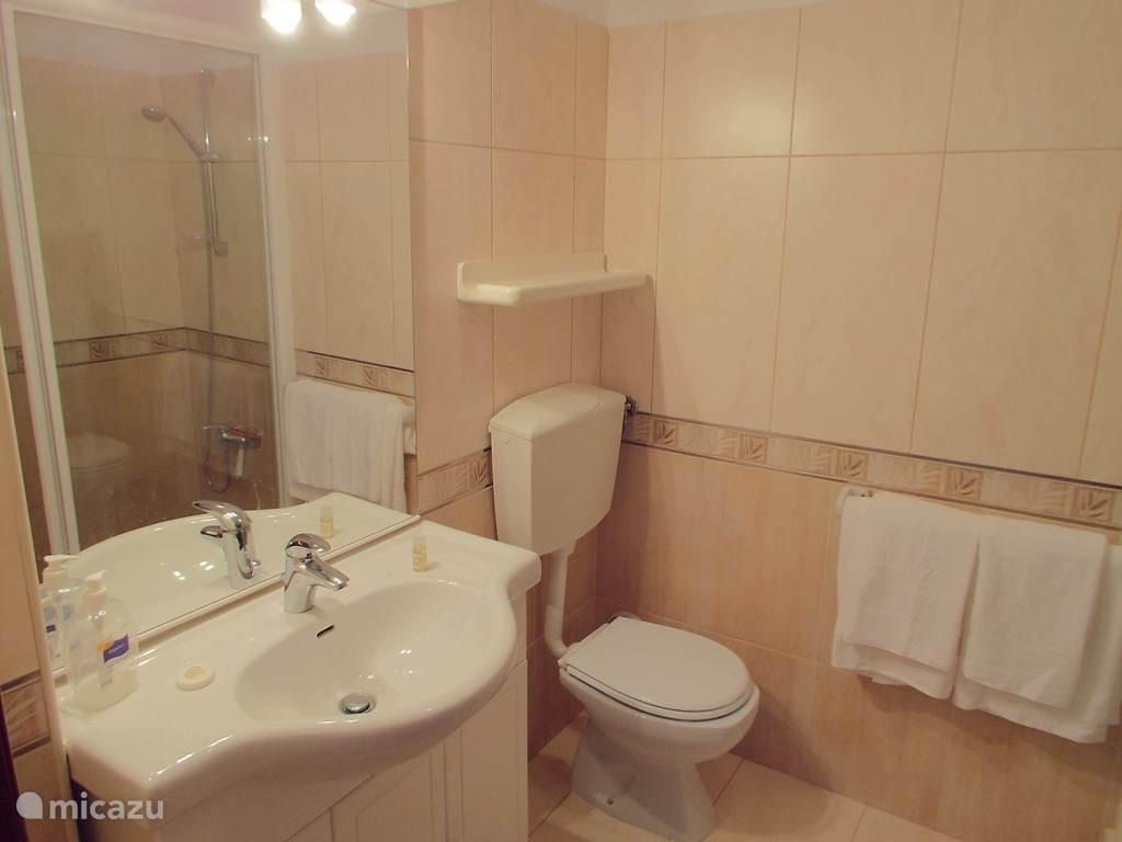 En de tweede badkamer, eveneens met douche.
