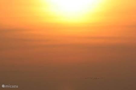 Zonsondergang op de Poesta