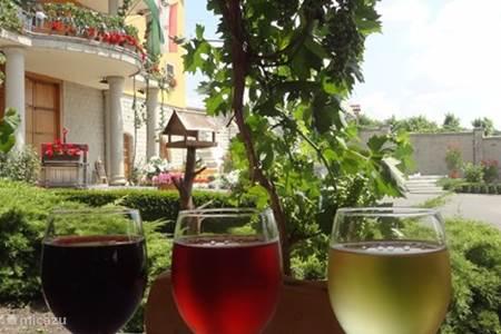 Wijnproeven bij de boer (Eger)