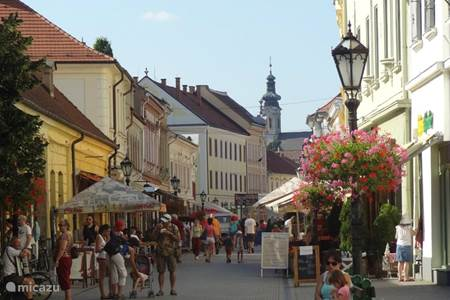 Eger, grote plaats met vele terrassen, winkels, restaurants, burcht, basiliek, thermaal.