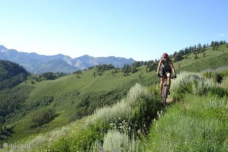 Mountain bike trails Benahavis