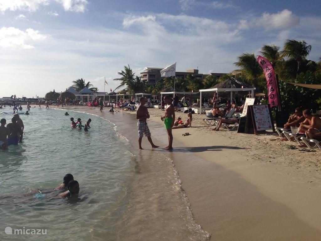 strand van blauw baai