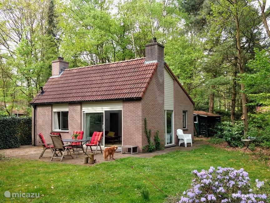 Vakantiehuis Nederland, Gelderland, Harfsen Vakantiehuis Het Externest