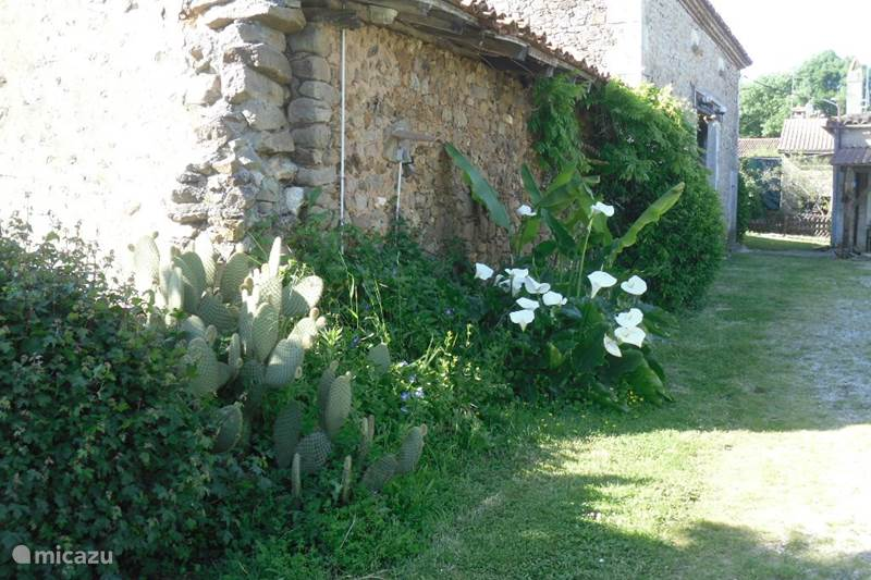 Vakantiehuis Frankrijk, Charente, Montbron Boerderij Boerderij platteland 1880