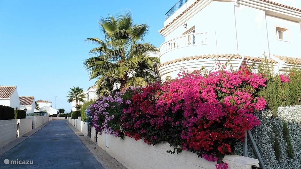 Vakantiehuis Spanje, Costa Blanca, San Fulgencio La Marina vakantiehuis Casajaja