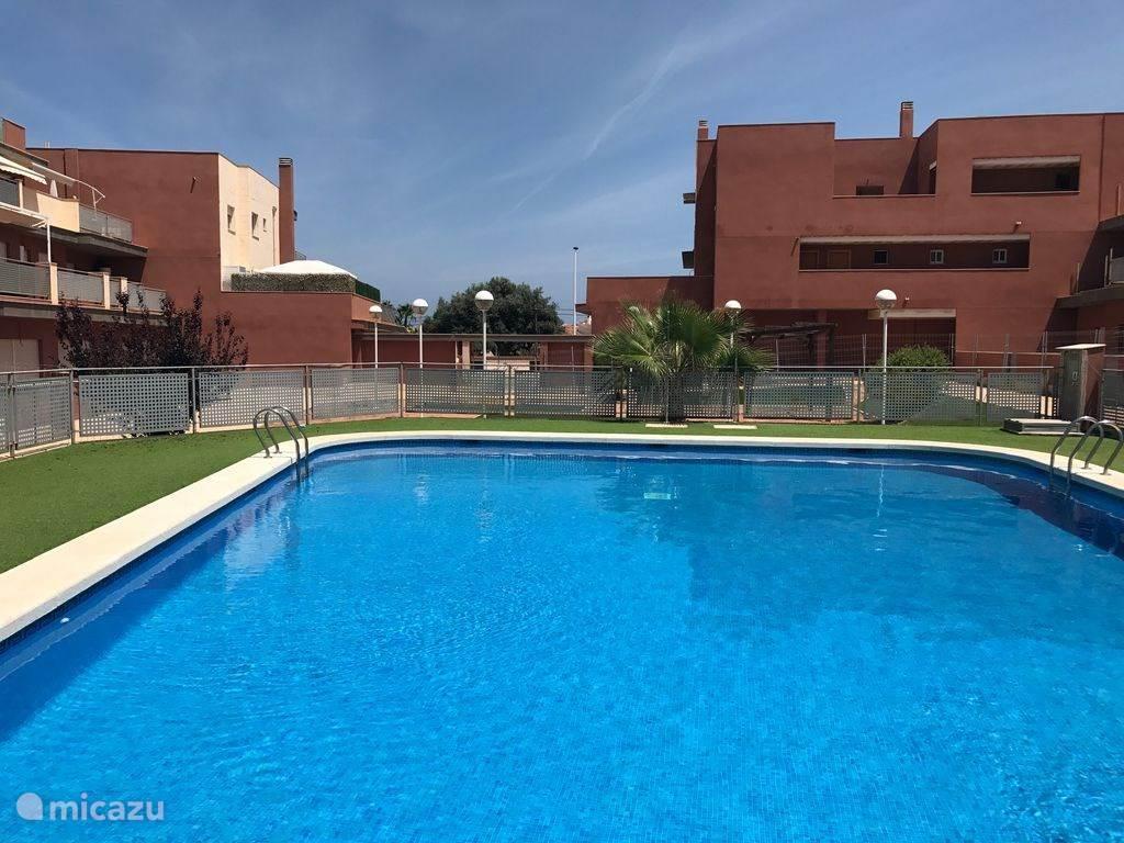 gemeenschappelijk zwembad.