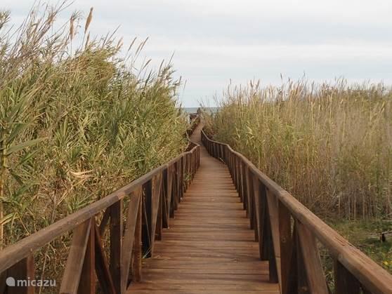 Vrijwel voor de deur de loopbrug naar het strand