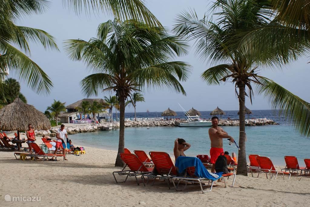 Rustig strand met gratis ligstoelen. Zacht zand. Meteen snorkelen of duiken vanaf het strand.  Bediening totaan uw ligstoel!