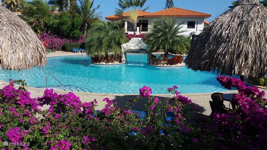 het zwembad op het resort