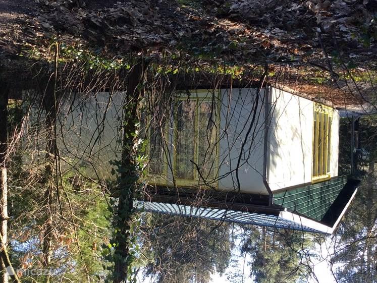 Achterzijde van het huisje gezien vanaf het bospad.