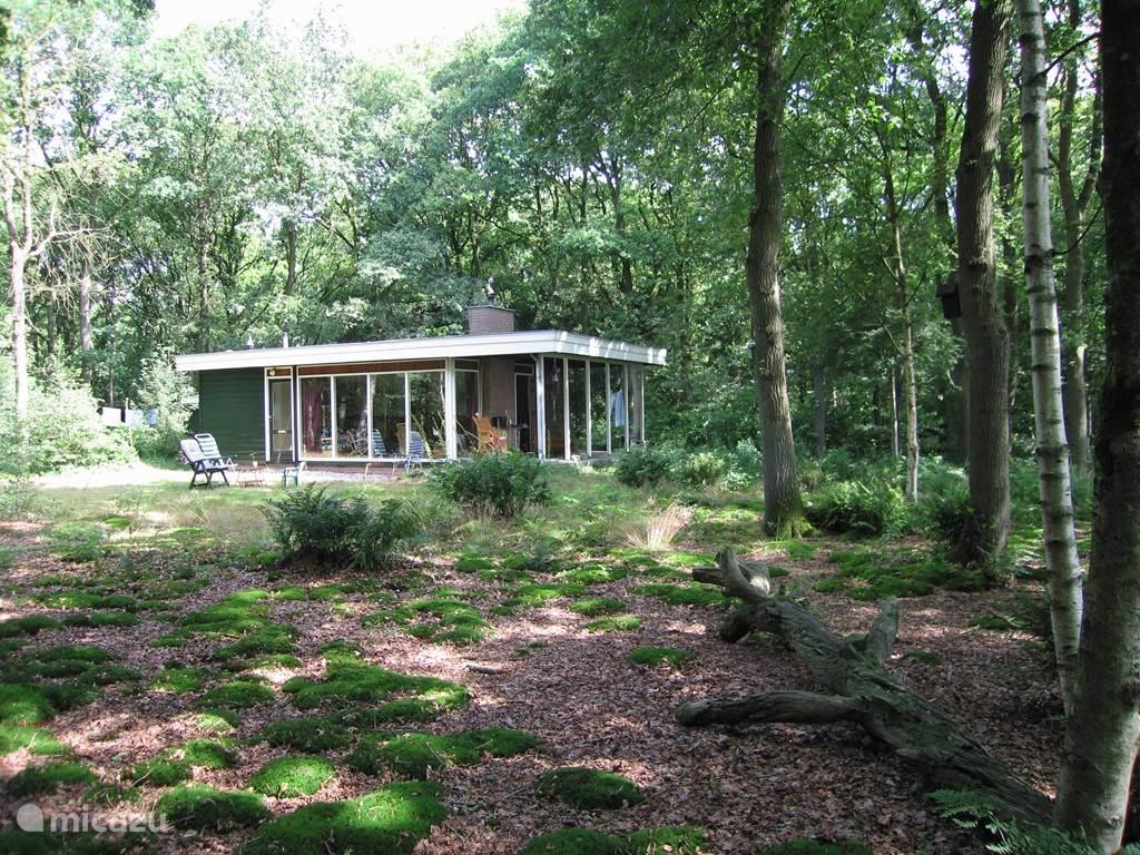 Vacation rental Netherlands, Drenthe, Wateren bungalow Het Boshuis dogs and horses welcome