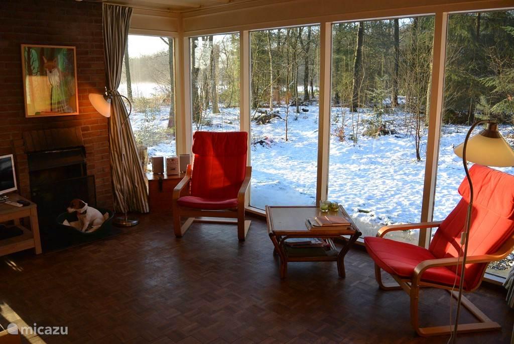 Vakantiehuis Nederland, Drenthe, Wateren Bungalow Het Boshuis honden en paarden welkom