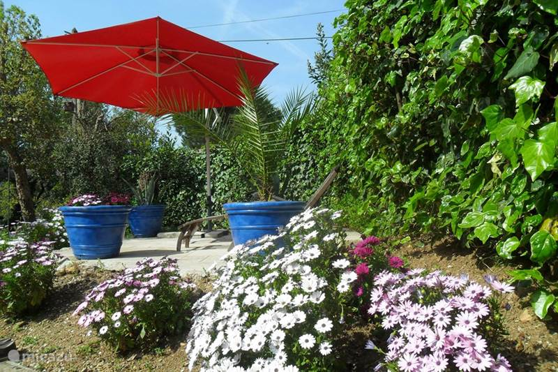 Vacation rental France, French Riviera, Gassin Bungalow Bungalow Michel