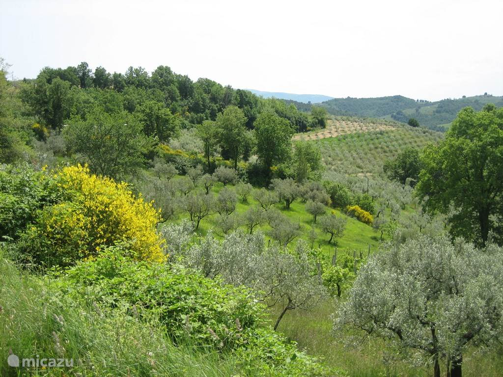 Gli Archi en Umbria