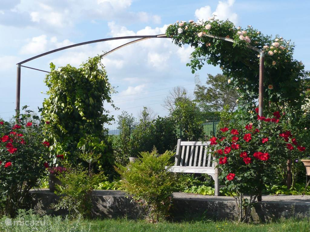 De tuin is overal toegankelijk voor onze gasten. Er zijn heerlijke plekjes om te zitten en van het uitzicht te genieten.