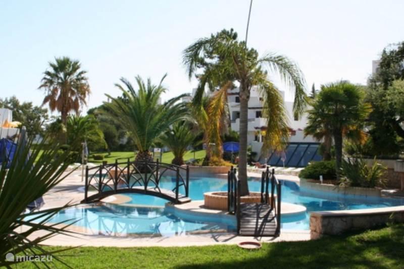 Vakantiehuis Portugal, Algarve, Albufeira Appartement Luxurious Apartment on a Golf Resort