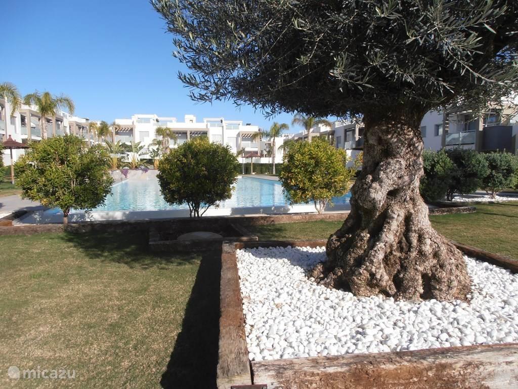 Vakantiehuis Spanje, Costa Blanca, Torrevieja appartement Appartement, zuid Torrevieja 8