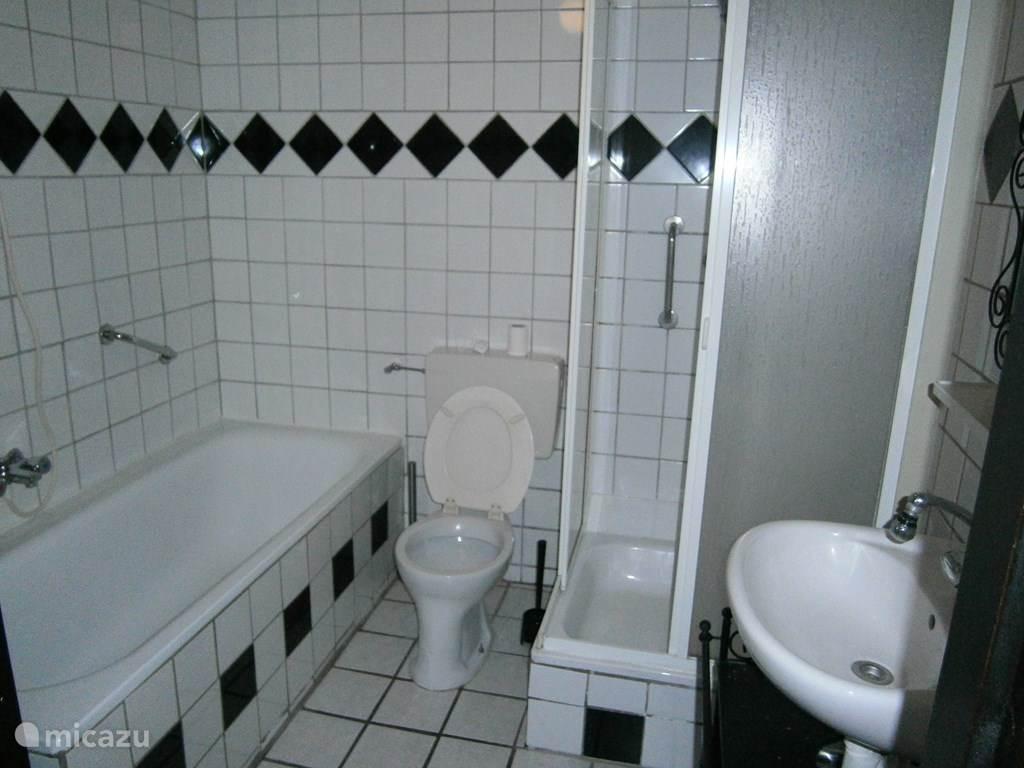 De badkamer met bad, douche, toilet en wastafel.