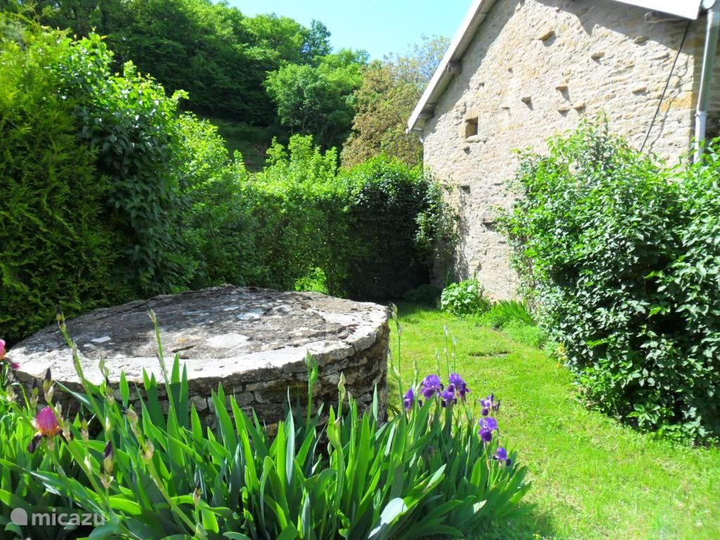 Kleine tuin aan de zijkant (zuid )