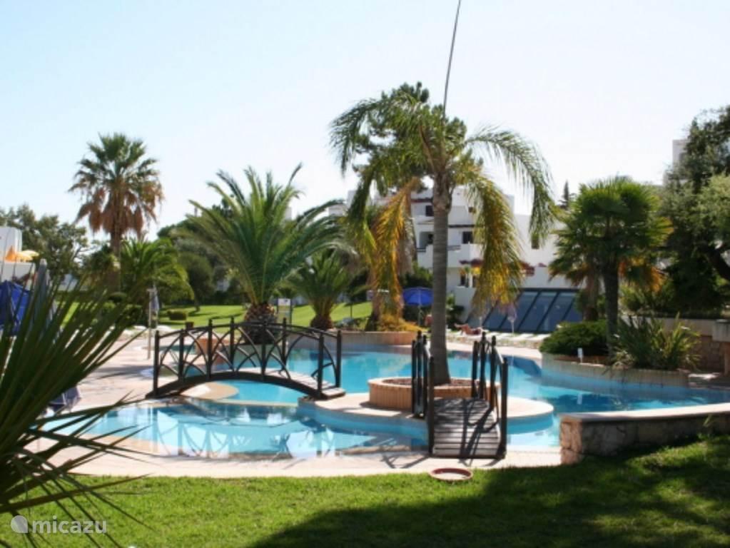 Vakantiehuis Portugal, Algarve, Albufeira Studio Luxe Studio voor 4 pax, Albufeira